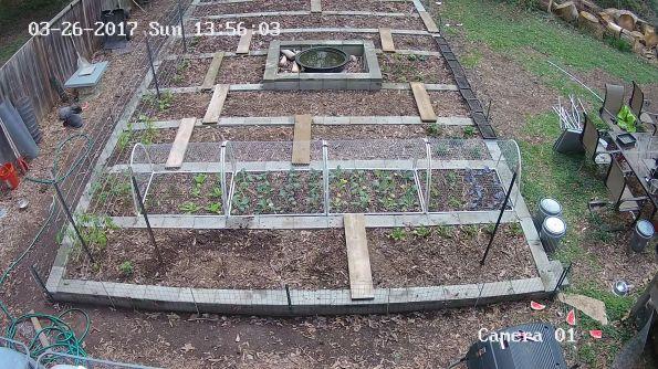 westwood_Garden_20170326135603_23354945